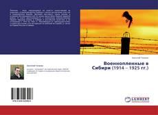 Военнопленные в Сибири (1914 – 1925 гг.)的封面