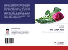 Buchcover von The Dutch Rose