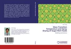 Bookcover of Glass Transition Temperature and Spray Drying of Sugar-Rich Foods