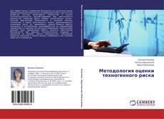 Bookcover of Методология оценки техногенного риска