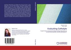 Bookcover of Evaluating Catholyte