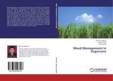 Weed Management in Sugarcane kitap kapağı