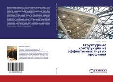 Bookcover of Структурные конструкции из эффективных гнутых профилей