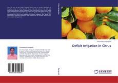 Borítókép a  Deficit Irrigation in Citrus - hoz