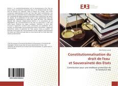 Copertina di Constitutionnalisation du droit de l'eau et Souveraineté des Etats
