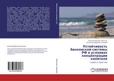 Copertina di Устойчивость банковской системы РФ в условиях концентрации капитала