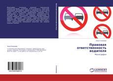 Bookcover of Правовая ответственность водителя