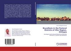 Brucellosis in the Pastoral Districts of Afar Region, Ethiopia的封面