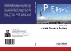 Малый бизнес в России kitap kapağı