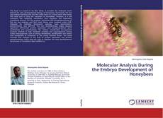 Bookcover of Molecular Analysis During the Embryo Development of Honeybees