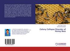 Обложка Colony Collapse Disorder of Honey Bees