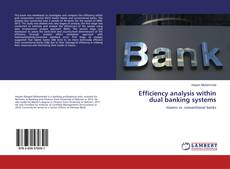 Bookcover of Efficiency analysis within dual banking systems