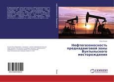 Bookcover of Нефтегазоносность преднадвиговой зоны Вуктыльского месторождения