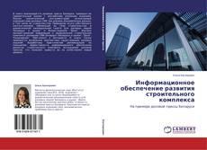 Информационное обеспечение развития строительного комплекса kitap kapağı