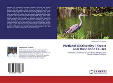 Bookcover of Wetland Biodiversity Threats and their Root Causes