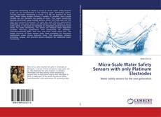 Capa do livro de Micro-Scale Water Safety Sensors with only Platinum Electrodes