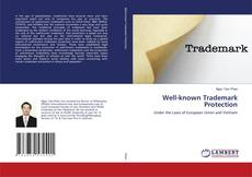 Bookcover of Well-known Trademark Protection