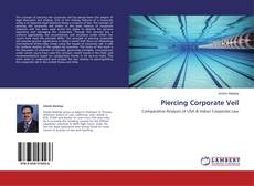 Piercing Corporate Veil kitap kapağı