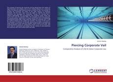 Capa do livro de Piercing Corporate Veil