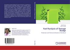 Copertina di Fast Pyrolysis of Sewage Sludge