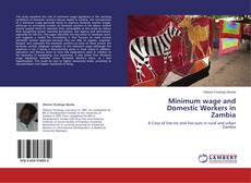 Bookcover of Minimum wage and Domestic Workers in Zambia