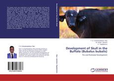 Development of Skull in the Buffalo (Bubalus bubalis) kitap kapağı