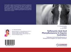 Bookcover of Tolfenamic Acid And Phenylbutazone In Equine Castration