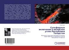 Bookcover of Сульфидные включения в визейских углях Республики Татарстан