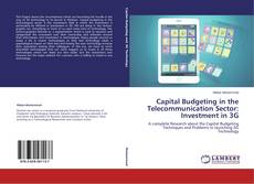 Bookcover of Capital Budgeting in the Telecommunication Sector: Investment in 3G