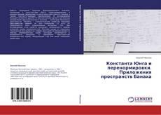 Capa do livro de Константа Юнга и перенормировки. Приложения пространств Банаха