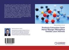 Protease Extraction from Horse Mango (Mangifera foetida Lour) Kernels的封面