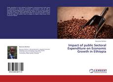 Bookcover of Impact of public Sectoral Expenditure on Economic Growth in Ethiopia