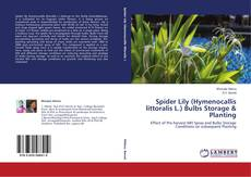 Bookcover of Spider Lily (Hymenocallis littoralis L.) Bulbs Storage & Planting