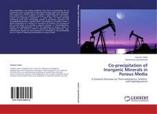 Couverture de Co-precipitation of Inorganic Minerals in Porous Media