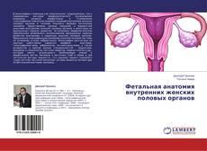Обложка Фетальная анатомия внутренних женских половых органов