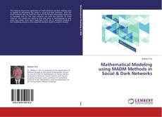 Mathematical Modeling using MADM Methods in Social & Dark Networks kitap kapağı