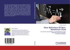 Copertina di Flow Behaviour Of Non-Newtonian Fluid
