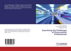 Examining the Challenges of Procurement Professionals kitap kapağı