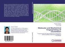Copertina di Molecular and Biochemical Fingerprinting of Clusterbean