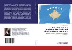 Bookcover of Косово: путь к независимости и её перспективы. Книга 1