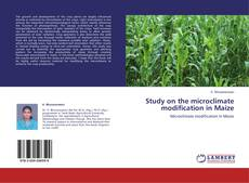 Обложка Study on the microclimate modification in Maize