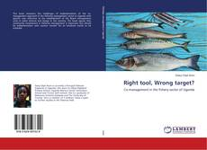 Bookcover of Right tool, Wrong target?