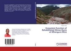 Bookcover of Ecosystem Function of Rehabilitated Slimes Dams at Mhangura Mine