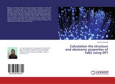 Bookcover of Calculation the structure and electronic properties of TaB2 using DFT