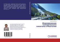 Формирование человеческого капитала в Монголии kitap kapağı