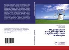 Bookcover of Модификация нанодисперсиями каучукообразных полимеров