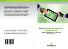 Bookcover of Информационная среда управления