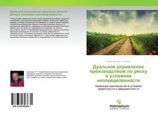 Bookcover of Дуальное управление производством по риску в условиях неопределенности