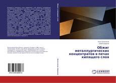 Bookcover of Обжиг металлургических концентратов в печах кипящего слоя