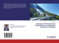 Bookcover of Impact of Infrastructure Expenditure on Economic Growth in Ethiopia